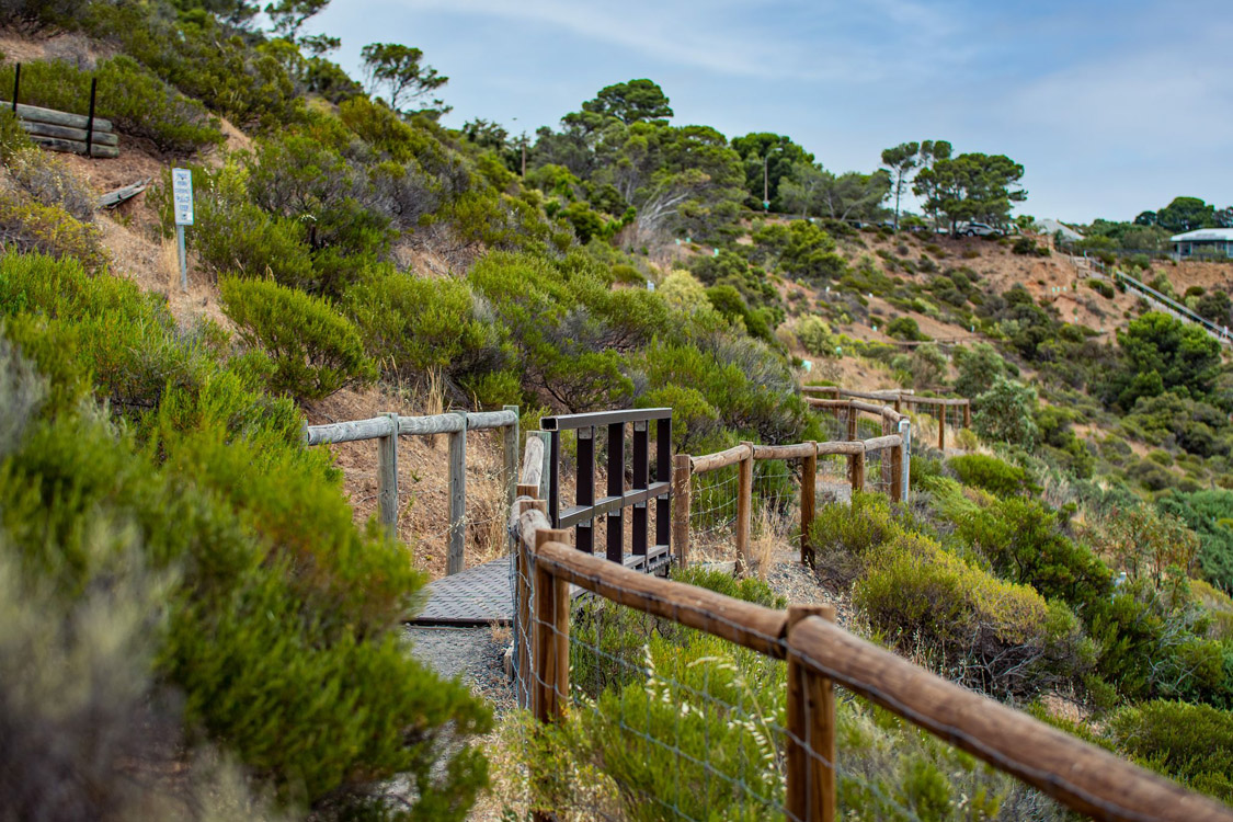walking trails | Brighton Beachfront Holiday Park