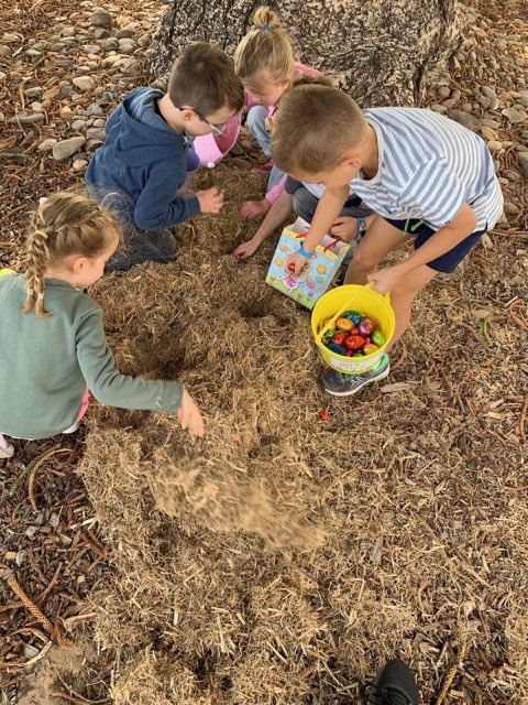 FUN activities and facilities are specifically designed for kids
